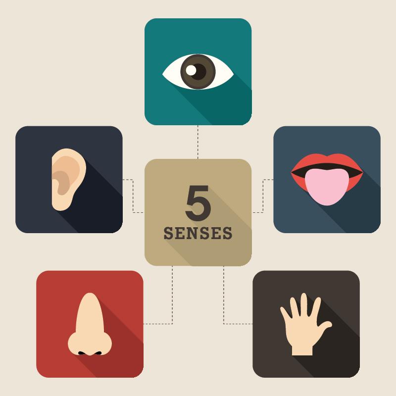 News_article on Five Senses